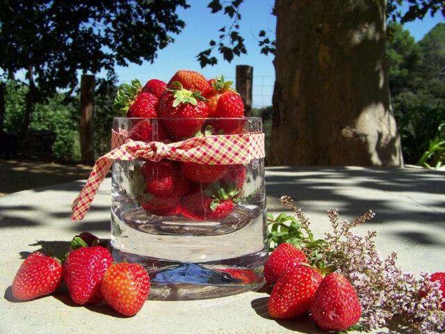 Fresas y… más fresas